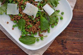 salada-lentilha-hortela