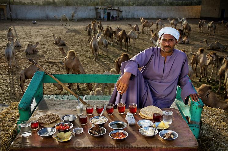 SalehAbdulFadlallah, vendedor de camelos,Egito.
