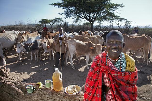 Noolkisaruni Tarakuai, a terceira das quatro esposas de um chefe de tribo, no Kenya.