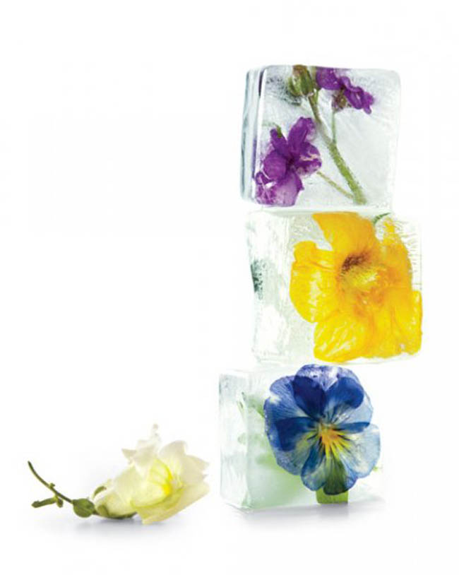 icecubes-flowers